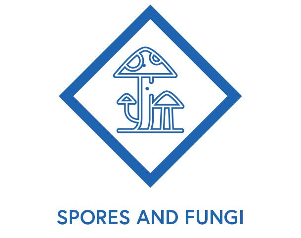 Symbol to show spores and fungi