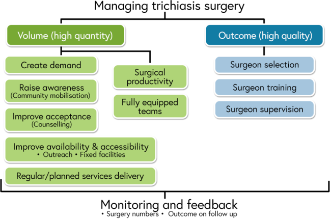 Managing trichiasis surgery for high volume and high quality