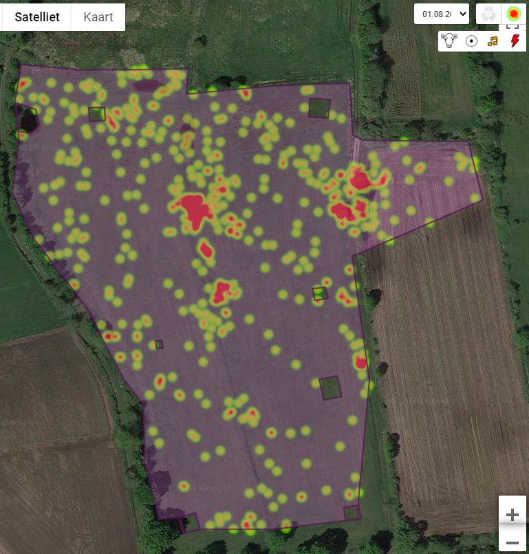 Figure 6 - Heat map of the position of a single cow in the virtual area (dark violet borders and a transparent violet fill) over a period of 7 days