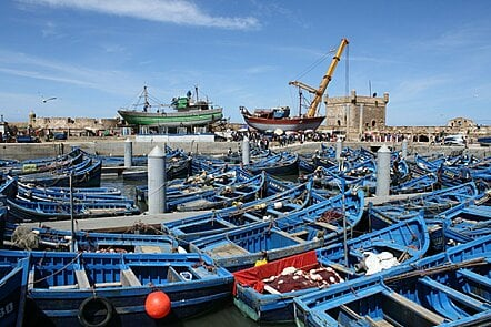 Fishing boats in the harbour at Essaouira, Morroco (Copyright: Bryce Stewart)
