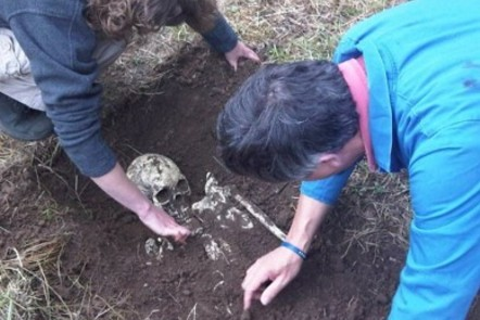 people excavating a skeleton buried in the ground