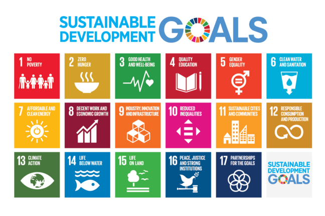 The Sustainable Development Goals are described in a United Nations Poster