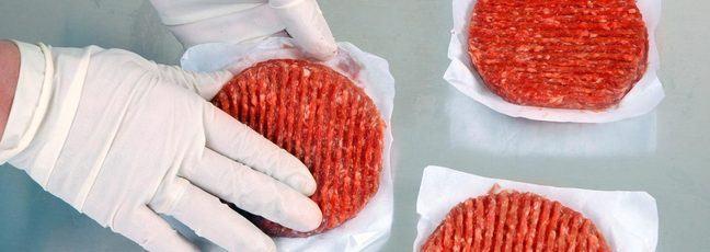 Food scientist handling meat burgers