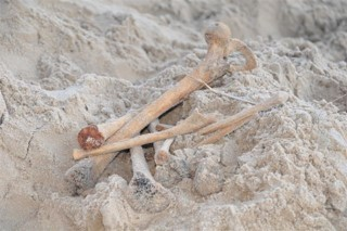 Human bones partially buried in sand