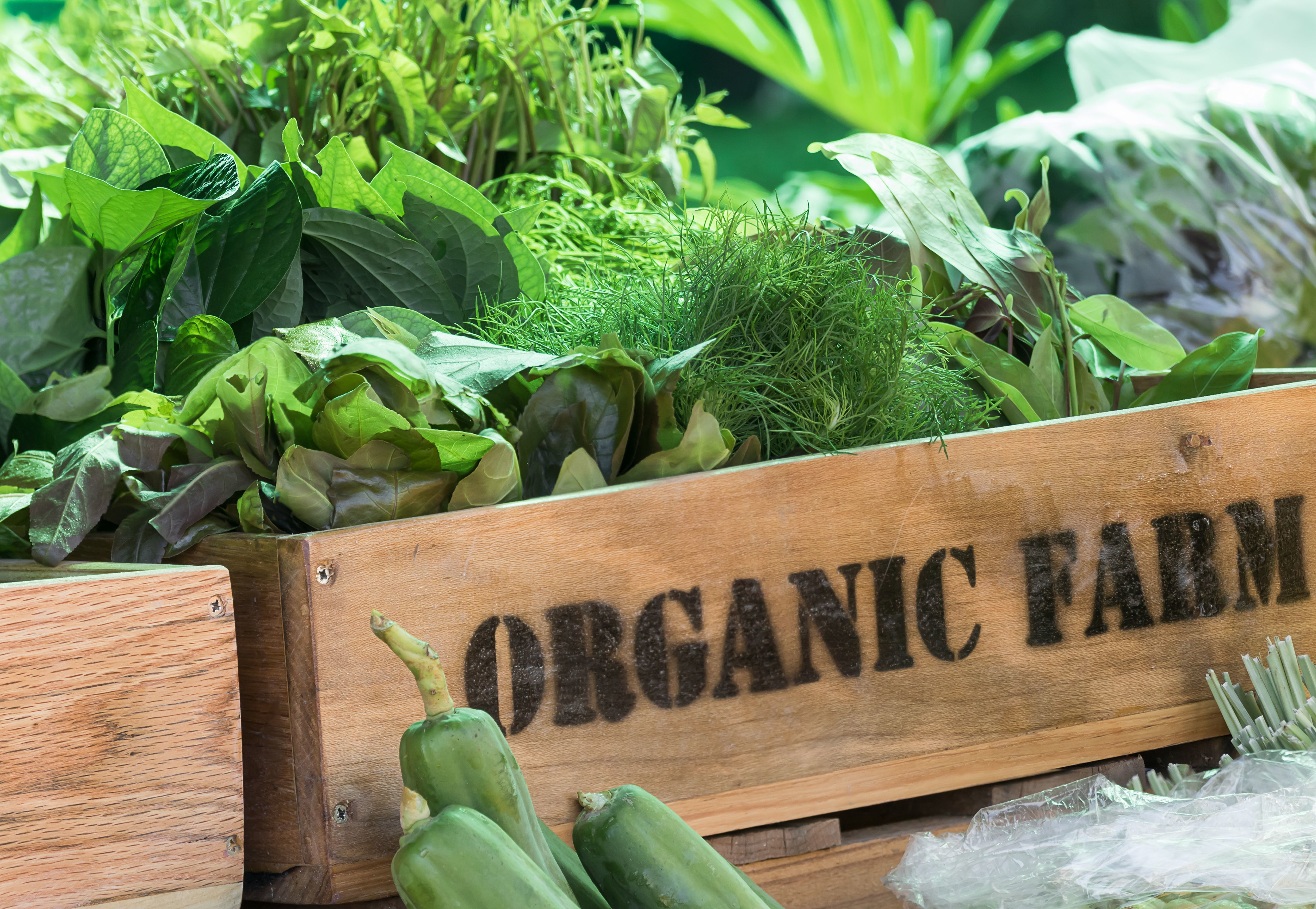A wooden box, containing vegetables. On the side is written 'ORGANIC FARM@