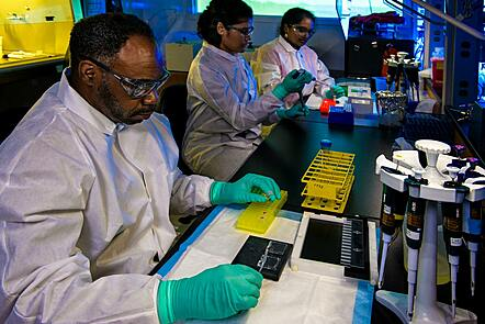 Three scientists carrying out scientific testing.