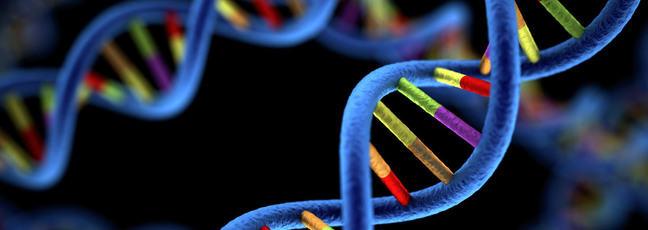 Genomics and a DNA helix model