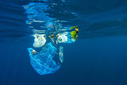 Plastic bags and rubbish floating near the surface, viewed from underwater