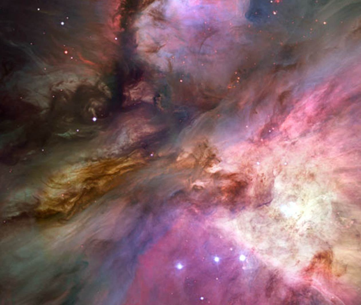 In the Night Sky: Orion