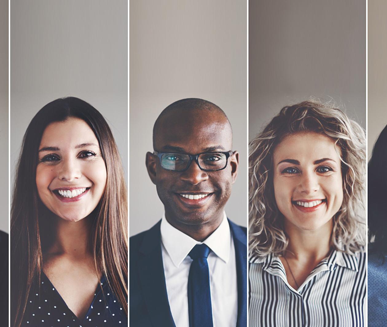 Diversity in Organisations