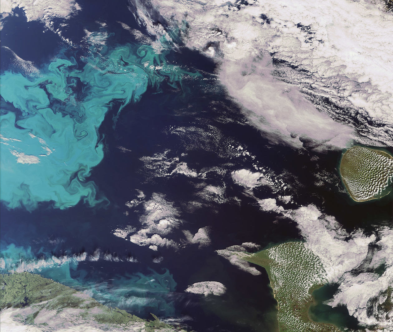 Earth Observation from Space: the Optical View