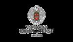 Logo for Complutense University of Madrid