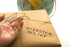 Disaster relief parcel