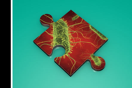 Regular_234dcf16-df00-49f7-b629-ce3ee659b390
