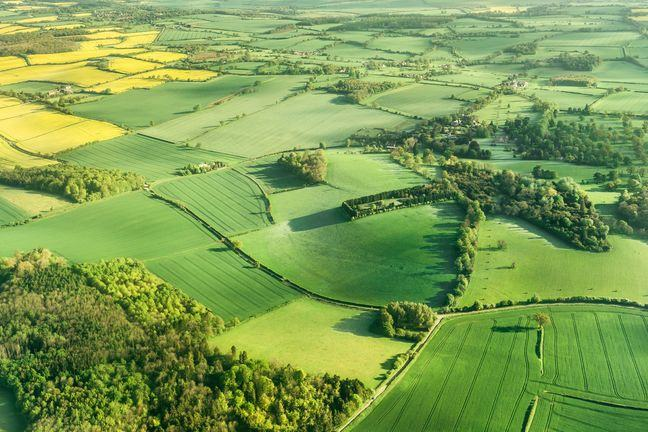 An aerial photograph of farmland, with small copses of woods