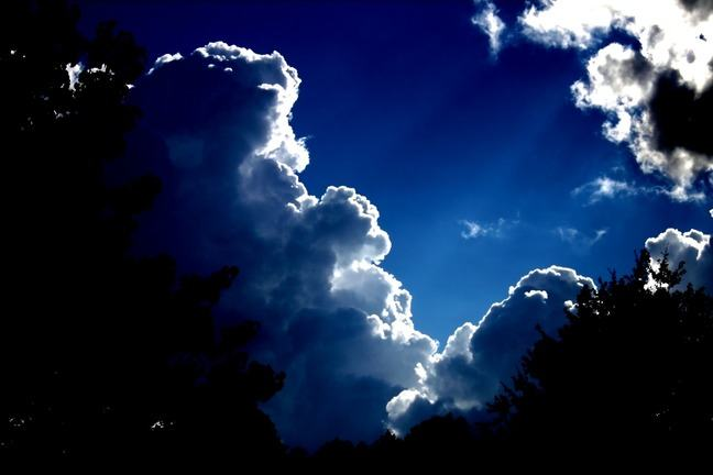 Photo of Cumulus clouds, angle of the shot has been taken from the ground.