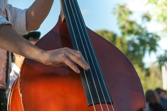 A musician strumming a double bass.