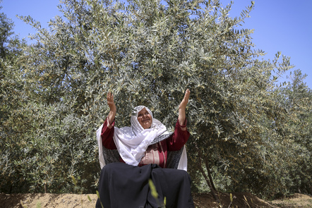 OCCUPIED TERRITORIES, GAZA. Portrait of a farmer. The ICRC helped her rehabilitate her agricultural lands, that were ruined several times during various conflicts in Gaza. (ICRC Photo)