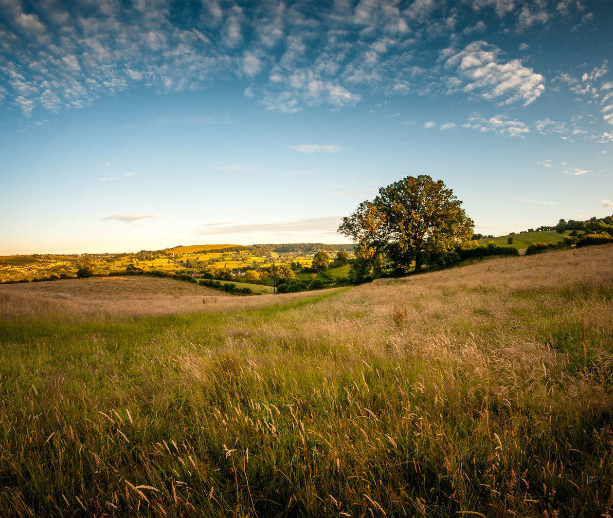 Valuing Nature: Should We Put a Price on Ecosystems?