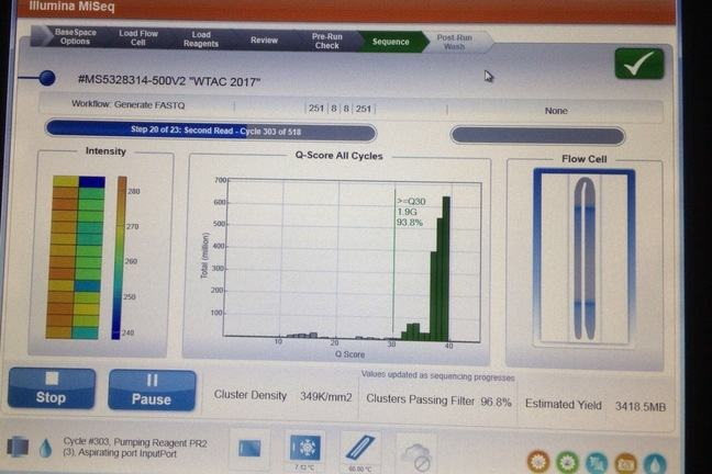 A screen image of Illumina MiSeq Output