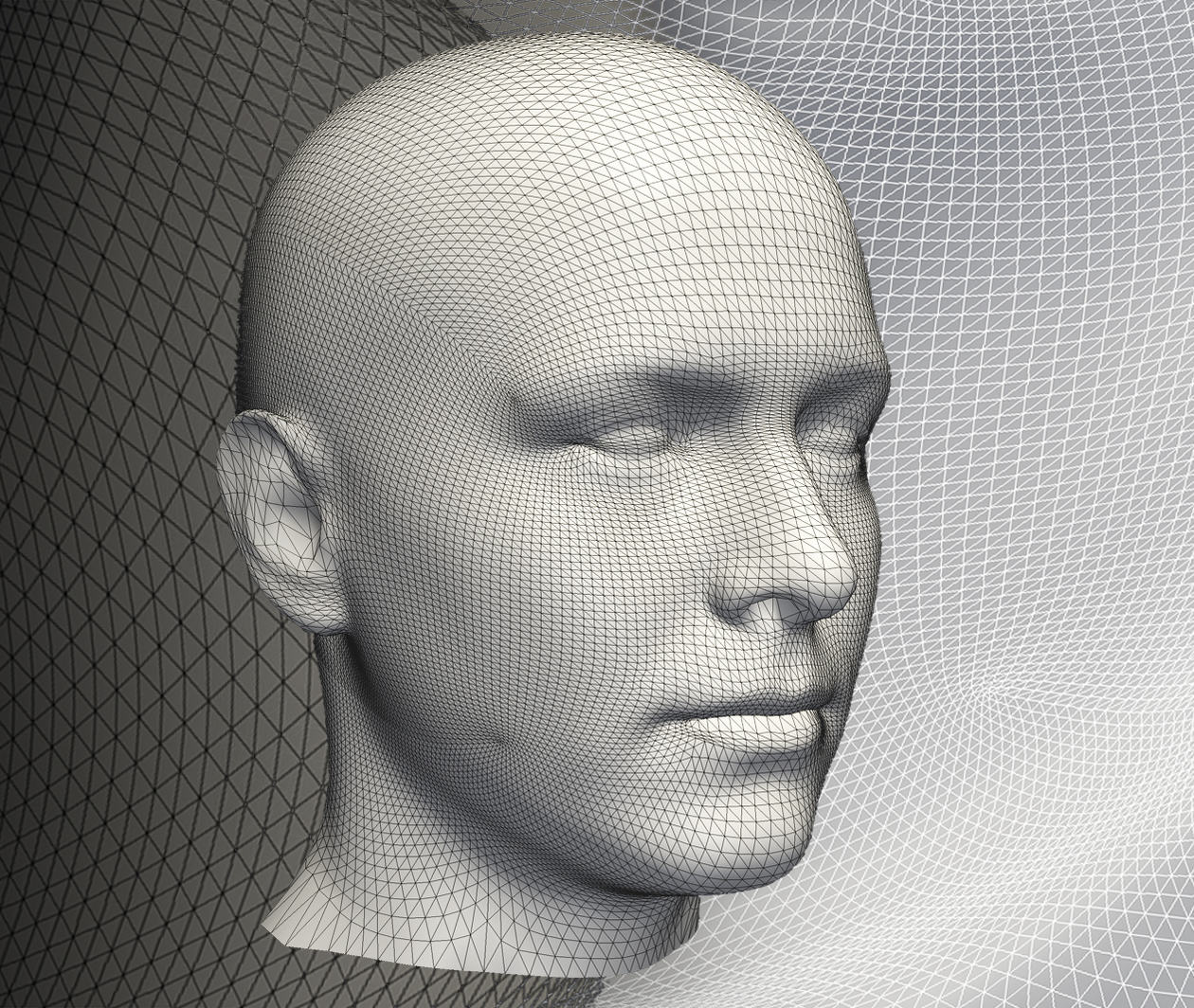 Statistical Shape Modelling: Computing the Human Anatomy