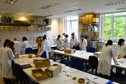 The human osteology lab at Durham University