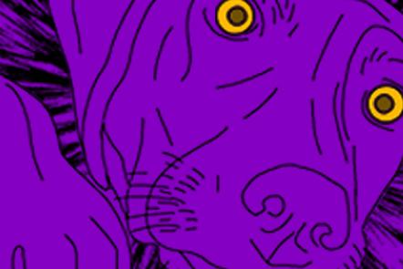 A dog's face – violet coloured