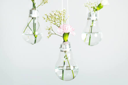 lights with flowers