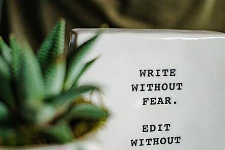 A small succulent plant in front of a framed image which reads 'Write without fear, edit without mercy'. All placed on a desk.