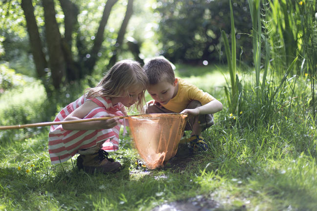 boy and girl looking into a butterfly net