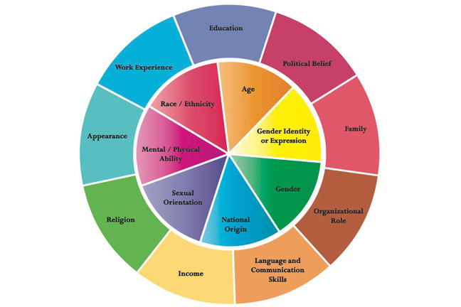 Johns Hopkins Diversity Wheel identifies visible and acquired dimensions of diversity