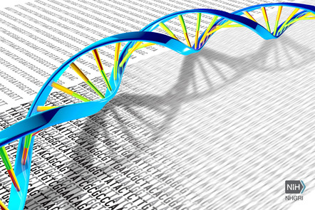 Image. Courtesy of National Human Genome Research Institute https://www.genome.gov/ Double stranded DNA resting on a page of black text G, T, C, and T DNA Base code letters on white paper