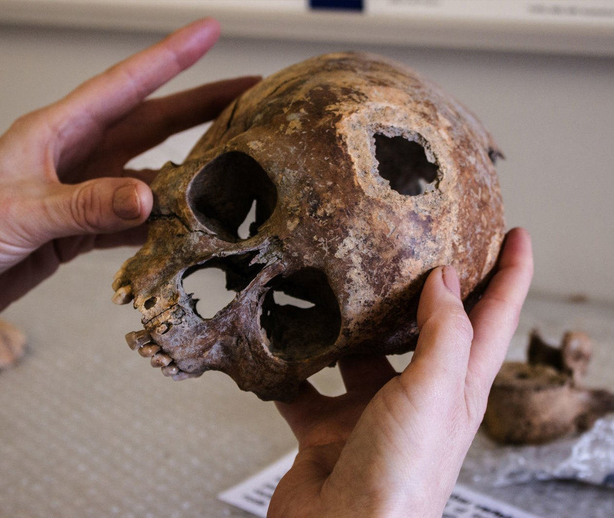 Archaeology: from Dig to Lab and Beyond