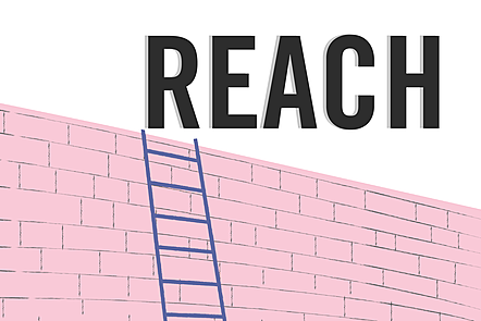 The word 'reach' in bold letters over an illustration of an ladder resting against a wall
