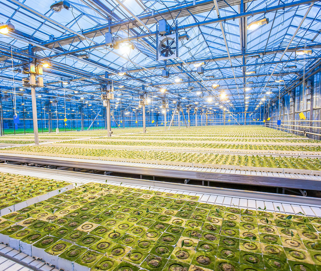Improving Food Production with Agricultural Technology and Plant Biotechnology