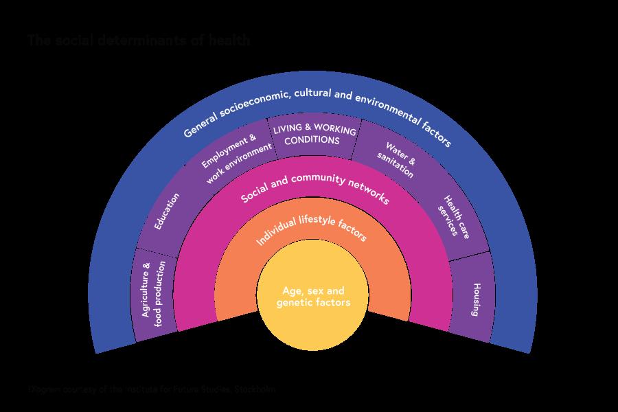 Social determinants of health graph