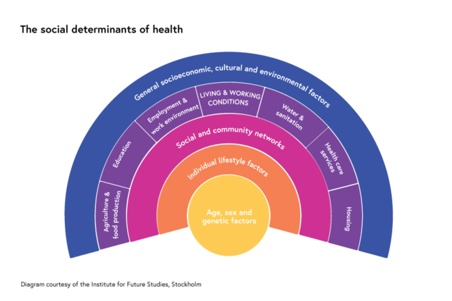 Social determinants of health graph