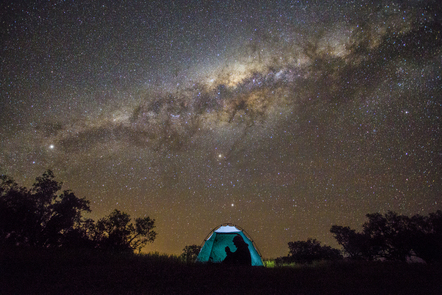 Photo of a starry sky above a lone tree and tent