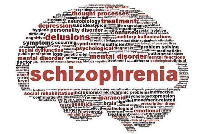 Schizophrenia word cloud in the shape of a brain