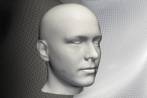An image of a human head created using statistical shape modelling