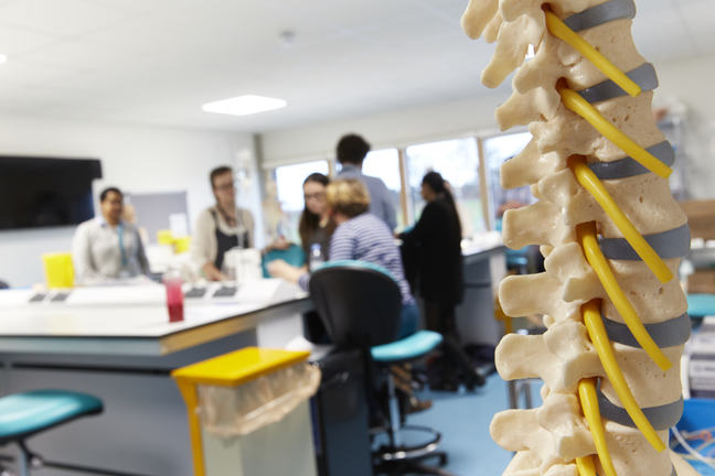Students in a lab with a model of a spine