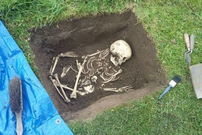 A skeleton in the bottom of a mock grave. The skeleton is partially jumbled up. There is a trowel and shovel at the edge of the grave.