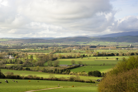 Fields of a green farm near to Dungarvan - a town close to this week's Gaeltacht Spotsolas.