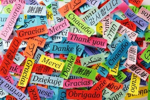 'Thank you' written in multiple languages on coloured pieces of paper