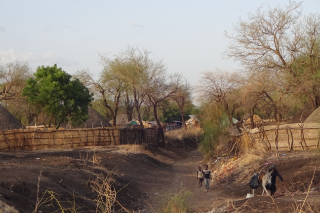 Landscape at Berber-Alfugara, a highly endemic village in Eastern Sudan.
