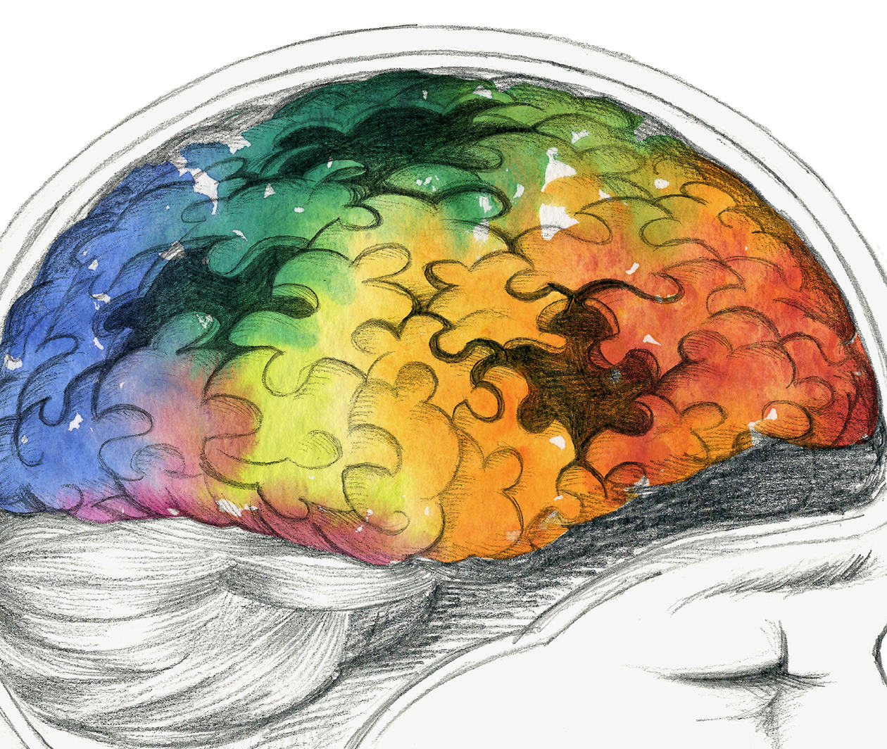 Ageing and The Brain: The Impact of Neurodegenerative Diseases