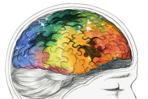 Artistic image of a brain cross-section as a puzzle