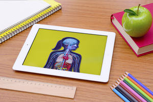 human body on tablet screen signifying e-learning for healthcare surrounded by writing materials and paper signifying traditional learning