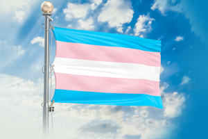 pink and blue striped flag