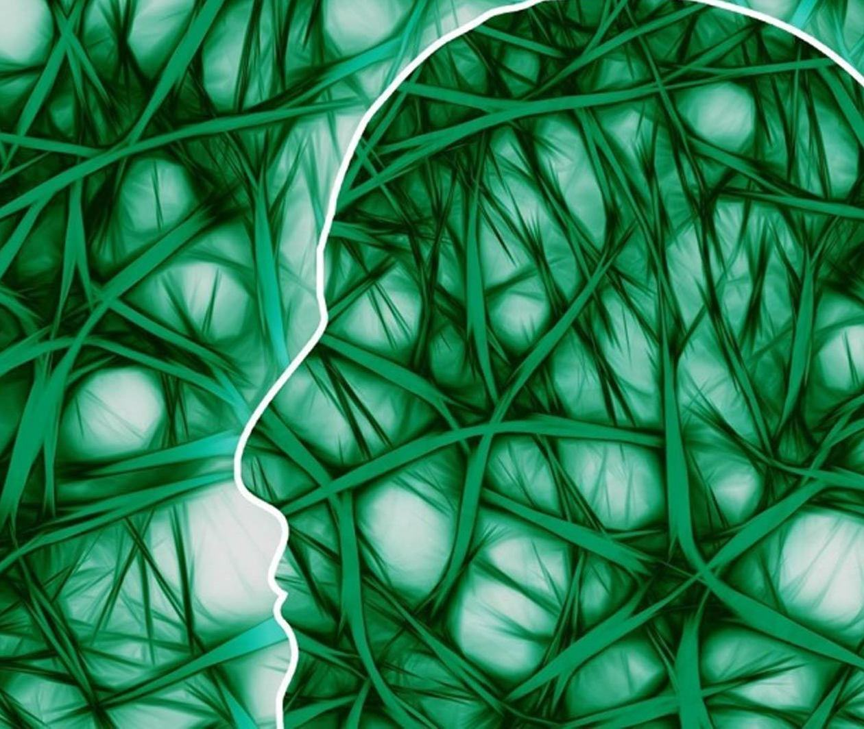 Psychology and Mental Health: Beyond Nature and Nurture